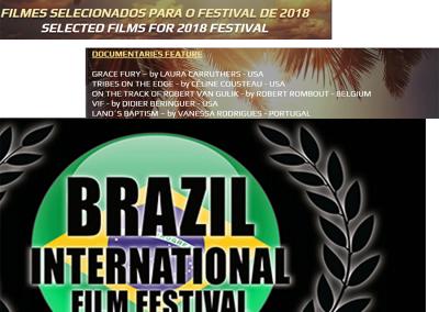 Finalist: Brazil Film Festival
