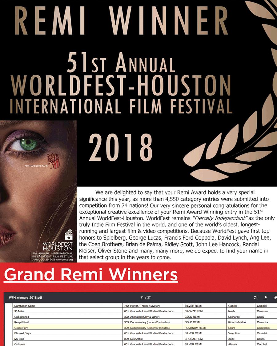 Winner: WorldFest Houston - Platinum Remi Award